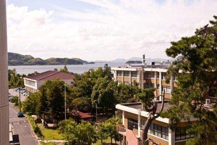 日本海の眺め