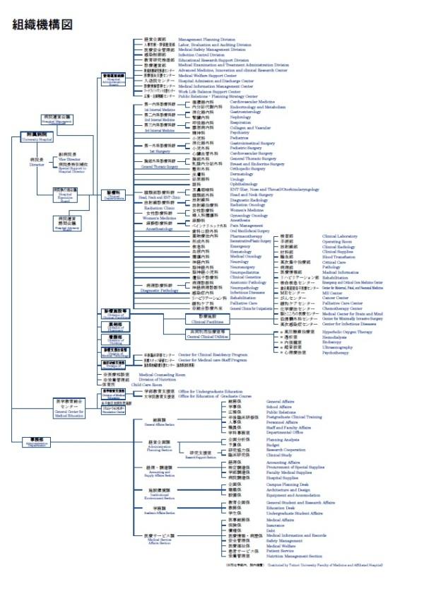 組織図2017