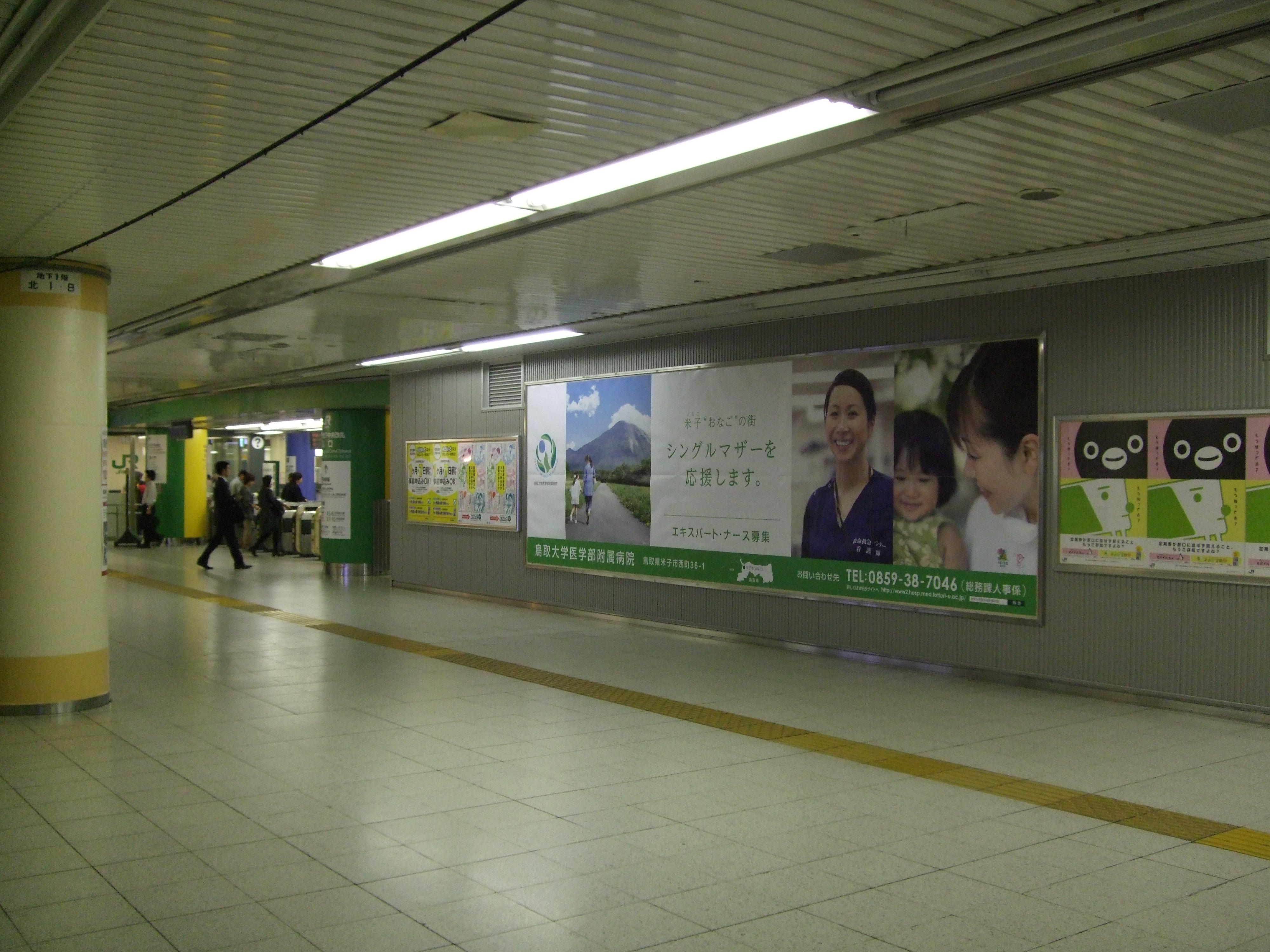 東京駅写真